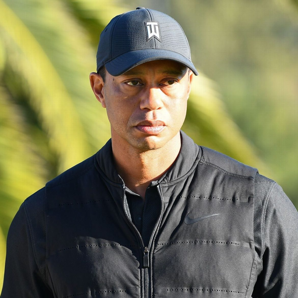 Tiger out of surgery for 'significant' leg injuries