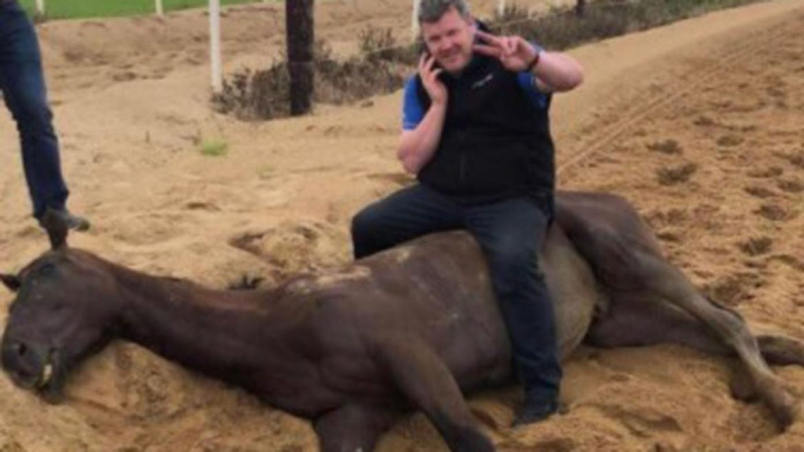 Trainer dumped after 'appalling' dead horse photo